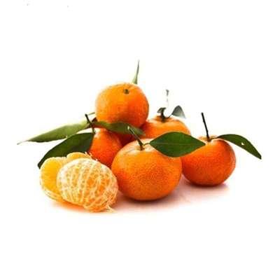 砂糖橘 广东四会砂糖橘 净6斤 砂糖桔子 蜜桔 蜜橘 新鲜水果 国产水果