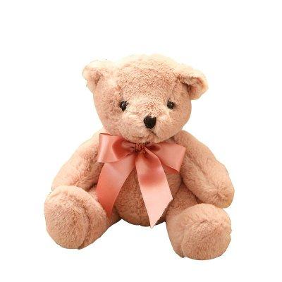 安吉宝贝可爱彩色小熊泰迪熊毛绒公仔布娃娃 婚庆抛洒小娃娃 儿童生日