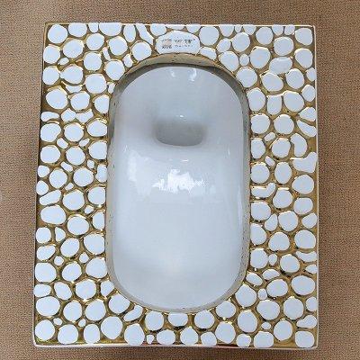 大学女生上厕所蹲坑图