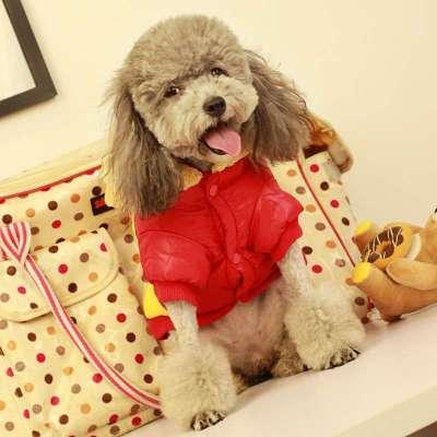 物保暖滑雪衣 小熊头两脚狗狗衣服 泰迪比熊小狗服饰