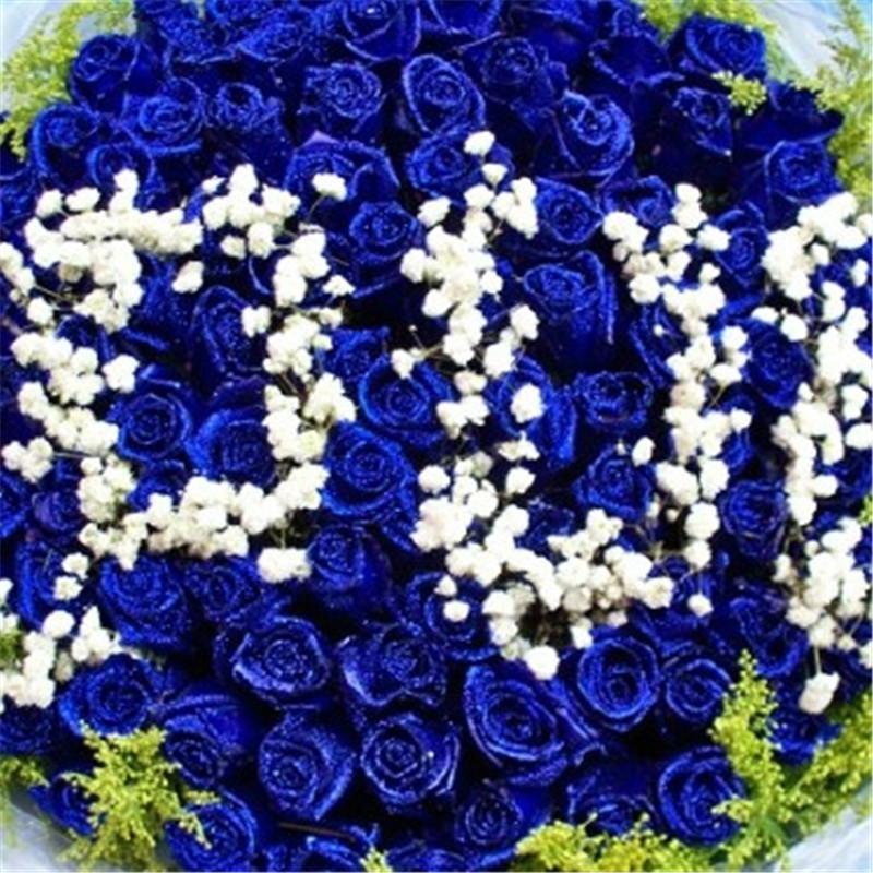 蓝色满天星花束手绘