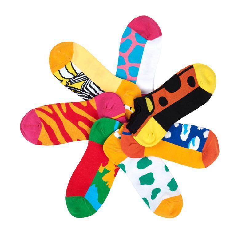 趣玩cotton pop疯狂动物园船袜礼盒 男士 均码