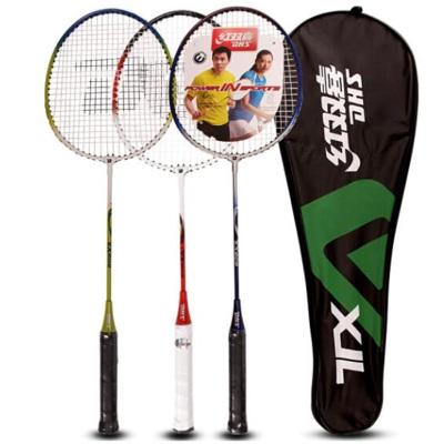 红双喜(DHS)羽毛球拍3支对拍控球型铁合金材质家庭型E-TX202已穿线适用业余初级及初学者