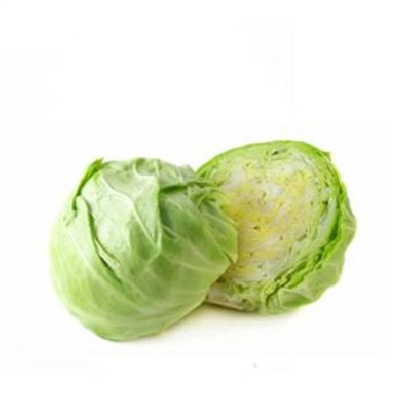 [上花]进口蔬菜种子甘蓝 卷心菜种子包菜