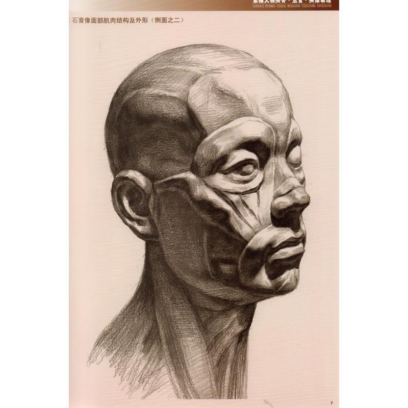 绘画教程书籍 素描人物头骨五官头像表现(黄金典藏版)/造型基础训练方