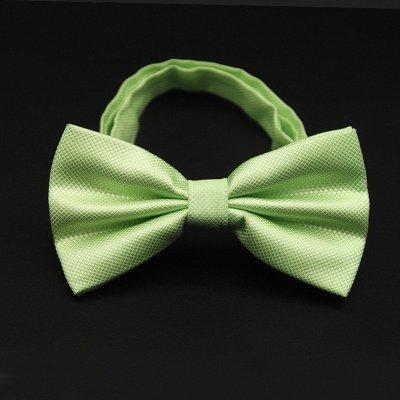 领结男正装结婚 韩版潮双层新郎婚礼男女纯色领结蝴蝶结 淡绿色