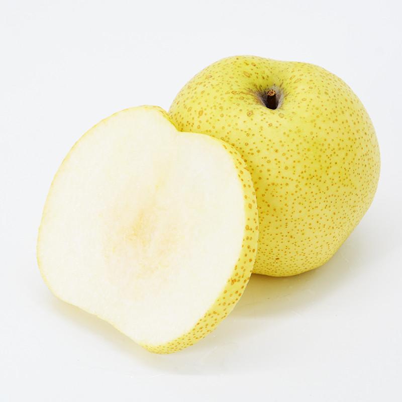 【爱心助卖】 爱心助残砀山酥梨8斤装 三百年传承梨子