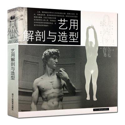 艺用人体解剖与造型 人体结构教学技法 素描速写书设计绘画CG参考医用头骨胸像 艺用人体肌肉骨骼解剖结构模型美术人体