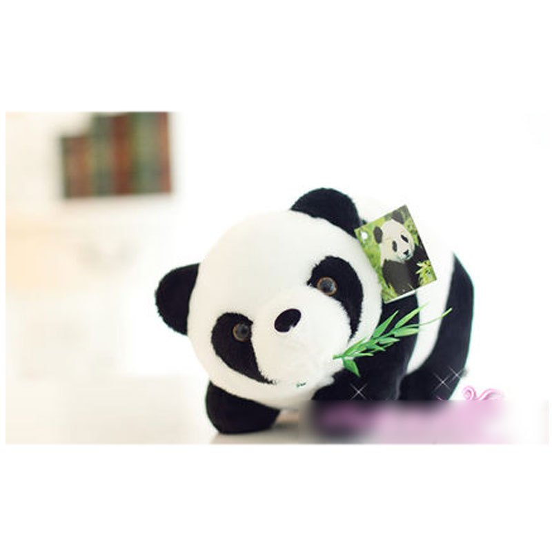 抱枕黑白抱抱熊大女生布娃娃女孩生日礼物小男女宝宝可爱玩偶大熊猫