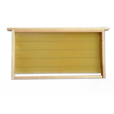 中蜂成品巢框巢础带框养蜂工具