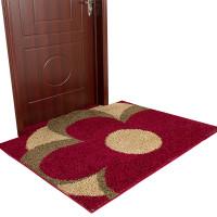 进户门地毯