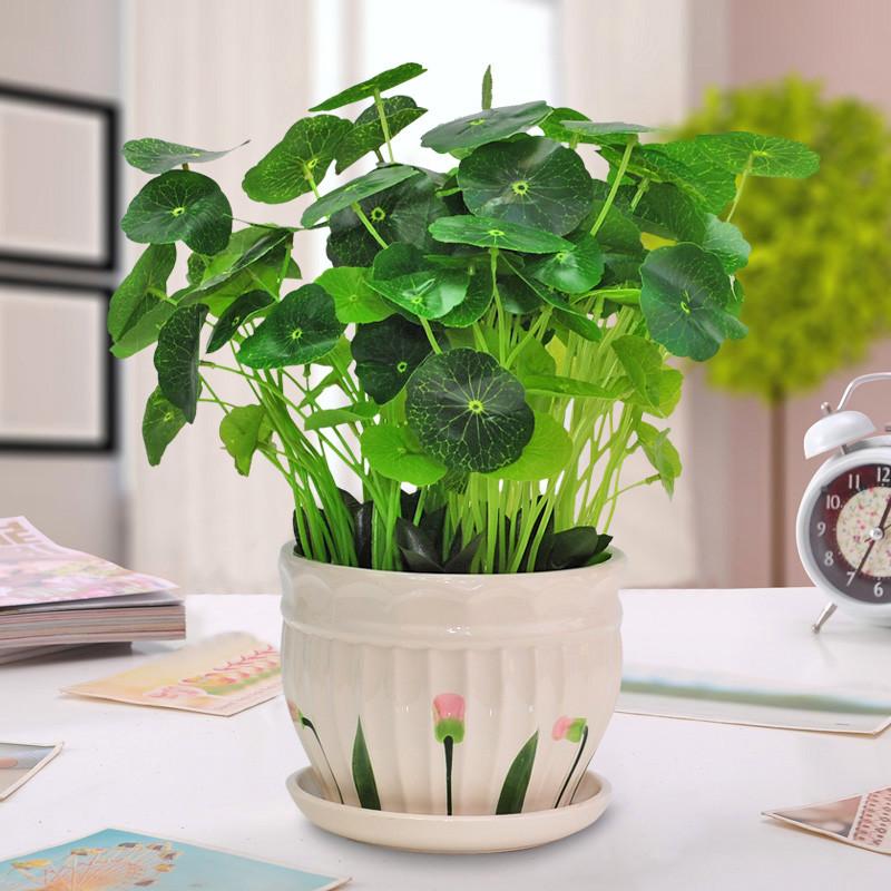 绿萝仿真绿植套装仿真花草植物家居客厅装饰盆栽摆设办公室摆件