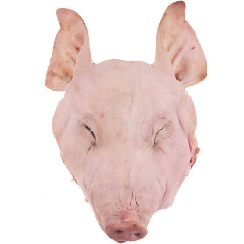 厕拍猪头系列八度_生猪头一个 6-9kg 整个猪头 新鲜猪肉 产发