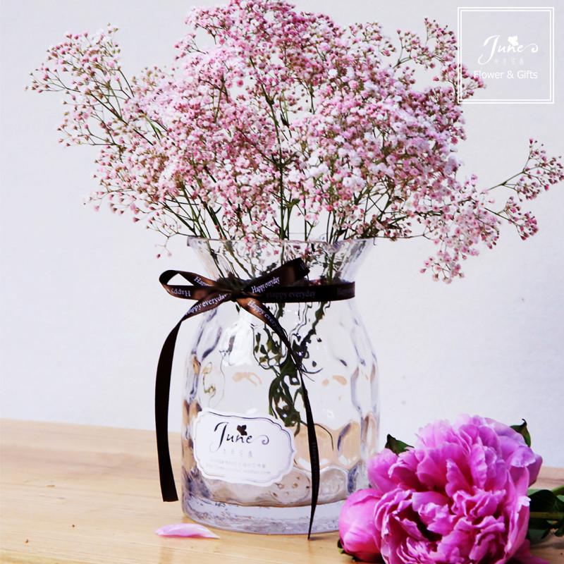 满天星干花带花瓶小清新波点花瓶插花玻璃瓶透明摆件客厅现代简约