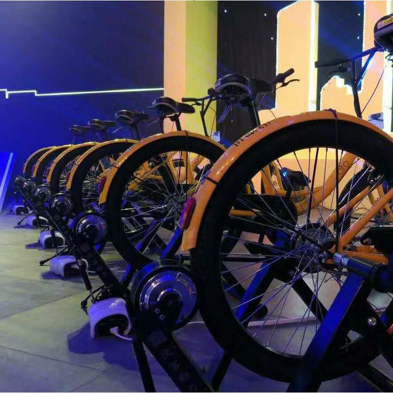 自行车发电机健身发电单车发电自行车家用健身室内12v